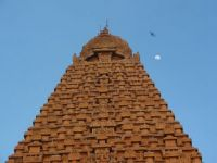 Thanjavur -  temple at moonrise