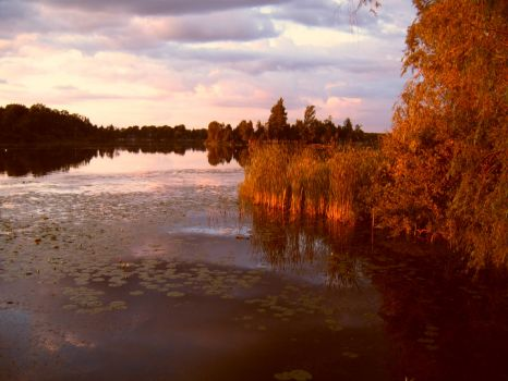 Peaceful lake Canada