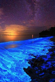 Awesome Nature - Bioluminescent Plankton, Hyams Beach,  Jervis Bay, Australia