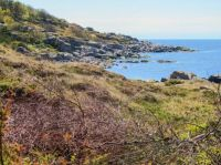 Summer on Bornholm