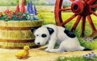 Cute doggie and Duckie!
