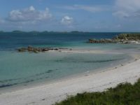 Tresco - I love it here