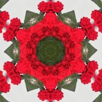 kaleidoscope 52 red star very large