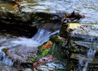 Rocky stream Emory Hill