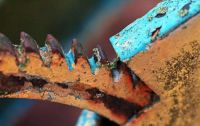 Turquoise and Rust