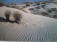 Windswept sand dunes of White Sand National Monument, New Mexico