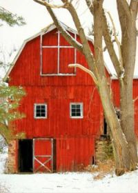 Old Red Country Barn In Winter...