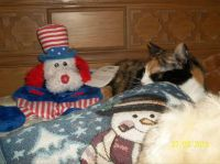Coco Cherie with her 4th of July toy.