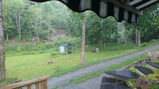 My greenhouse in rainy weather