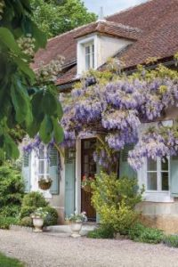 wisteriacottage