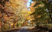 country road in autum