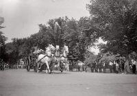THEME:  Vintage Photos  Firehorses Barney, Gene & Tom - 1925