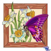 Butterfly and Daffodils