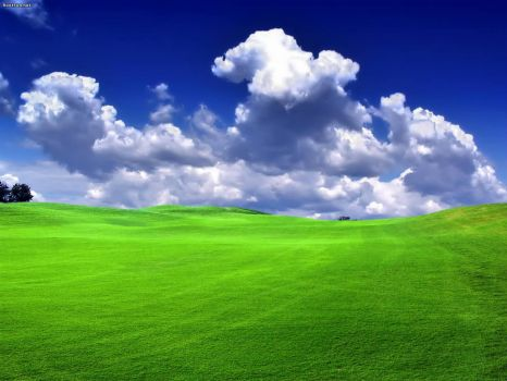 green-landscape-Wallpaper-1