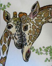 Giraffes - coloring book