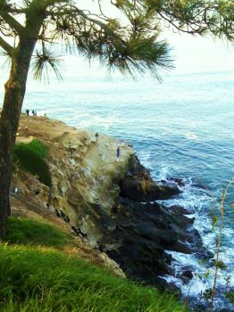 La Jolla coast - another view