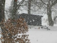 Snow Fall December 15 2017-2