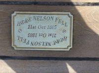Here Nelson Fell