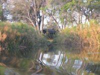 GC4P93T  Okavango S 19° 58.632 E 023° 17.997