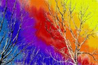 Trees: Abstract Background