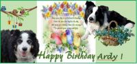 Happy Birthday Ardy! ❤️