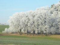Der erste Frost-Tag