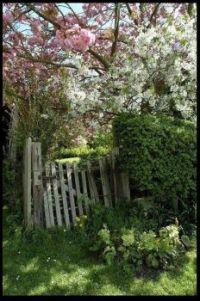 ~Old Old Gate~