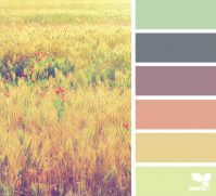 7_1_ColorField_maria