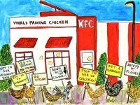 When Chickens Organize