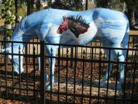 Ocala, FL horse #3