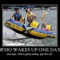 Who Wakes Up One Day.......