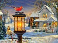 Christmas Cardinals in Winter by Sam Timm