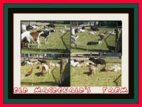 ==    OLD    MACDONALD'S   FARM  ==
