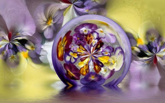 Pansies in a bubble
