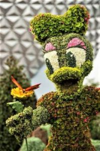 Daisey Duck topiary