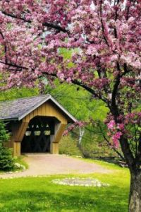 Covered Bridge in Spring...
