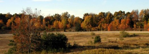 Why Michigan expressways are among the most scenic! I-94 xit 112