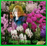 Happy Birthday Gail