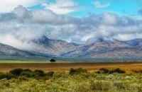 grassland & mountains