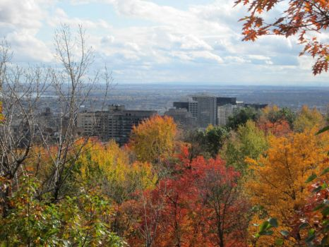 Hiking up Mount Royal