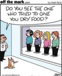 dry food.