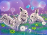 Rabbits and Dandelions