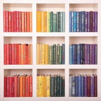 Color organized bookshelf (Medium)