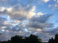 calico clouds--medium