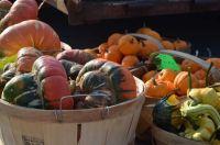 Franklin Autumn Farmers Market