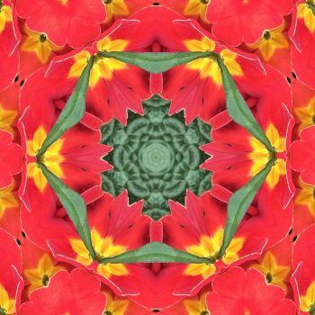 kaleidoscope 31 more red and yellow medium