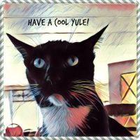 Cool Yule Cat