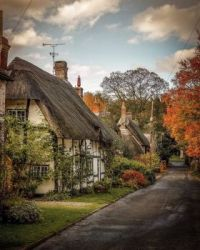 Autumn Colours, Wherwell, Hampshire