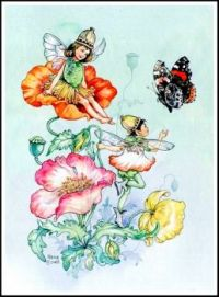 Poppy Fairies and Red Admiral Butterfly (smaller size)