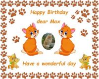 Happy Birthday dear Max (Jana's cat - Janazlouky)